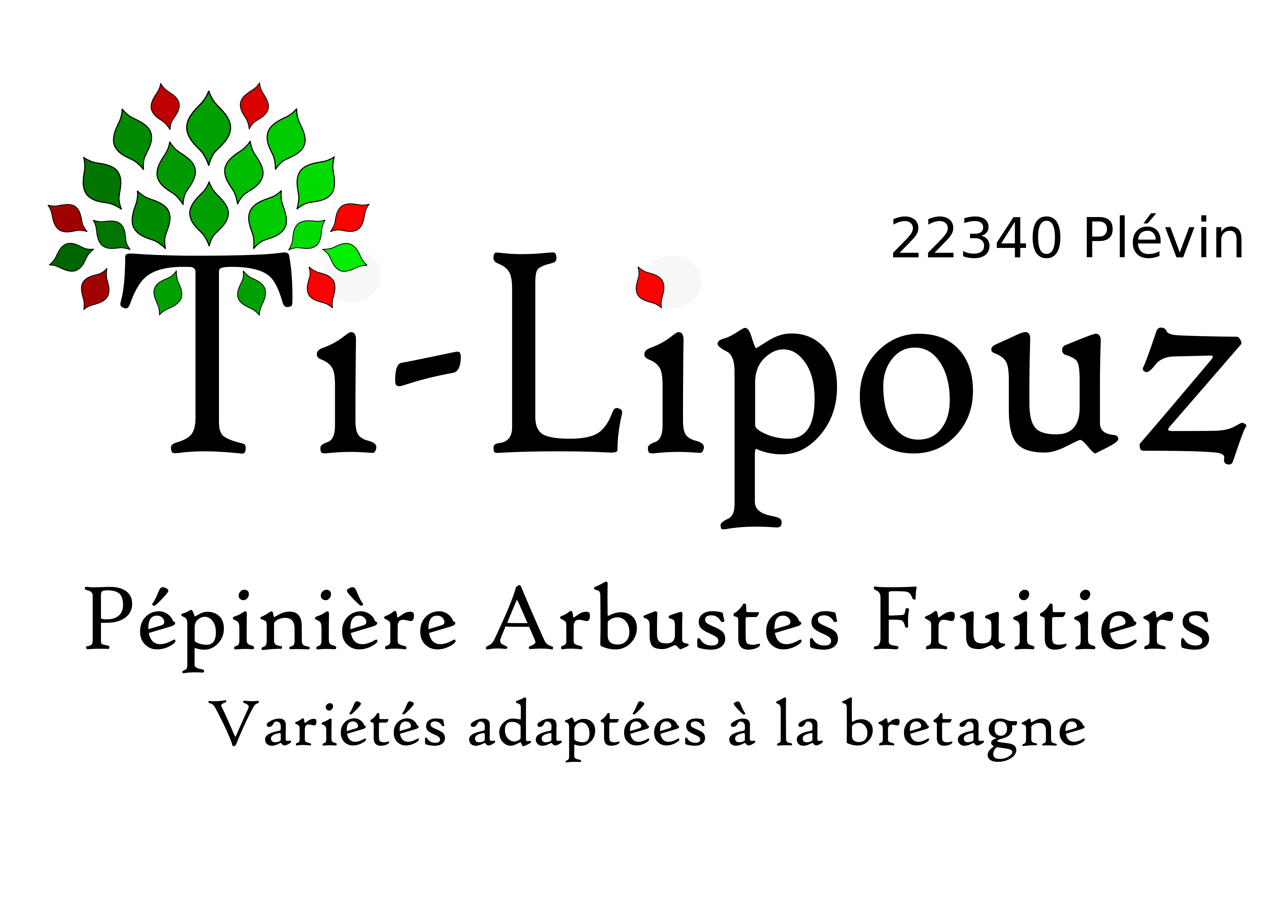 Bannière Ti-Lipouz